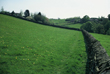 Click to enlarge image of wall following line of enclosure at Lee Farm